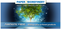 Paper and Biorefinery